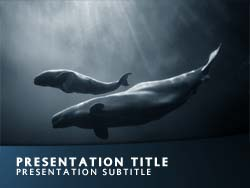 Free Whale PowerPoint Template title master powerpoint slide design