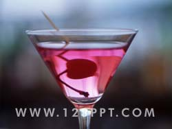Cocktail Photo Image