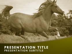 Horse Title Master slide design