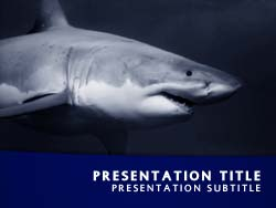 royalty free shark powerpoint template in blue, Modern powerpoint