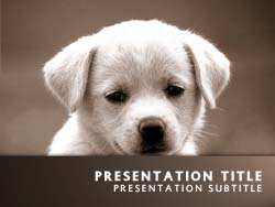 Royalty free puppy dog powerpoint template in orange puppy dog title master slide design toneelgroepblik Choice Image
