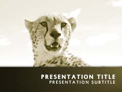 Cheetah Title Master slide design