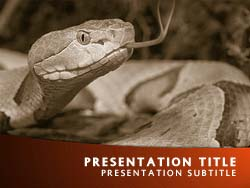 Royalty Free Snake Powerpoint Template In Orange