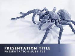 Spider Title Master slide design