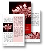 Corn Flower Word Template
